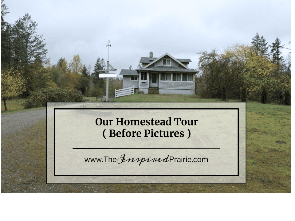 Our Homestead- The House Tour
