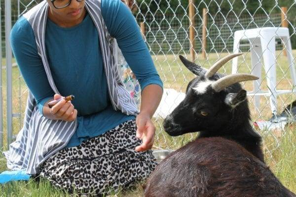 goat labor and delivery