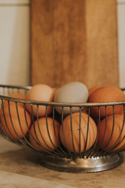 36 Essential Tips To Plan Your Homestead Correctly