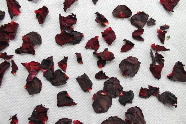 Dried rose petals on a paper towel