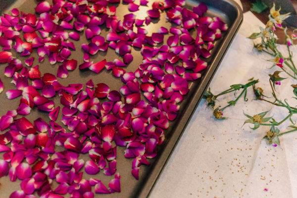 quick dried rose petals on a baking sheet