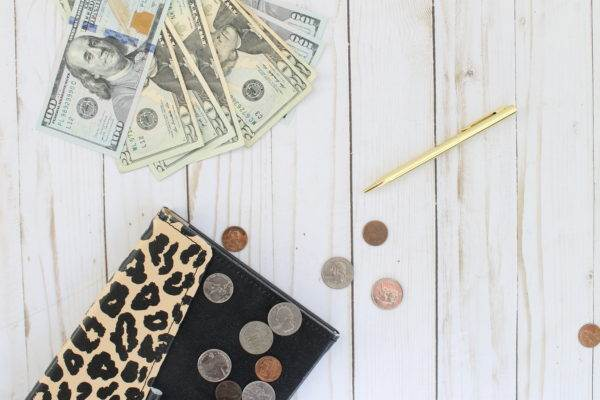 Money, dollars, coins and leopard notebook